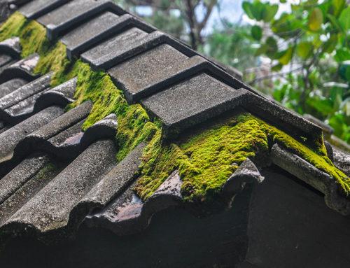 Schäden am Haus als Ursache für Wasserschäden